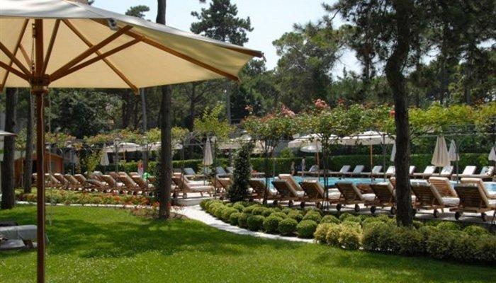 Hotel Greif 3908